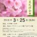 【2018年3月25日(日)】お花見礼拝会